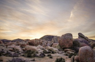 outdoor-story-joshua-tree-10