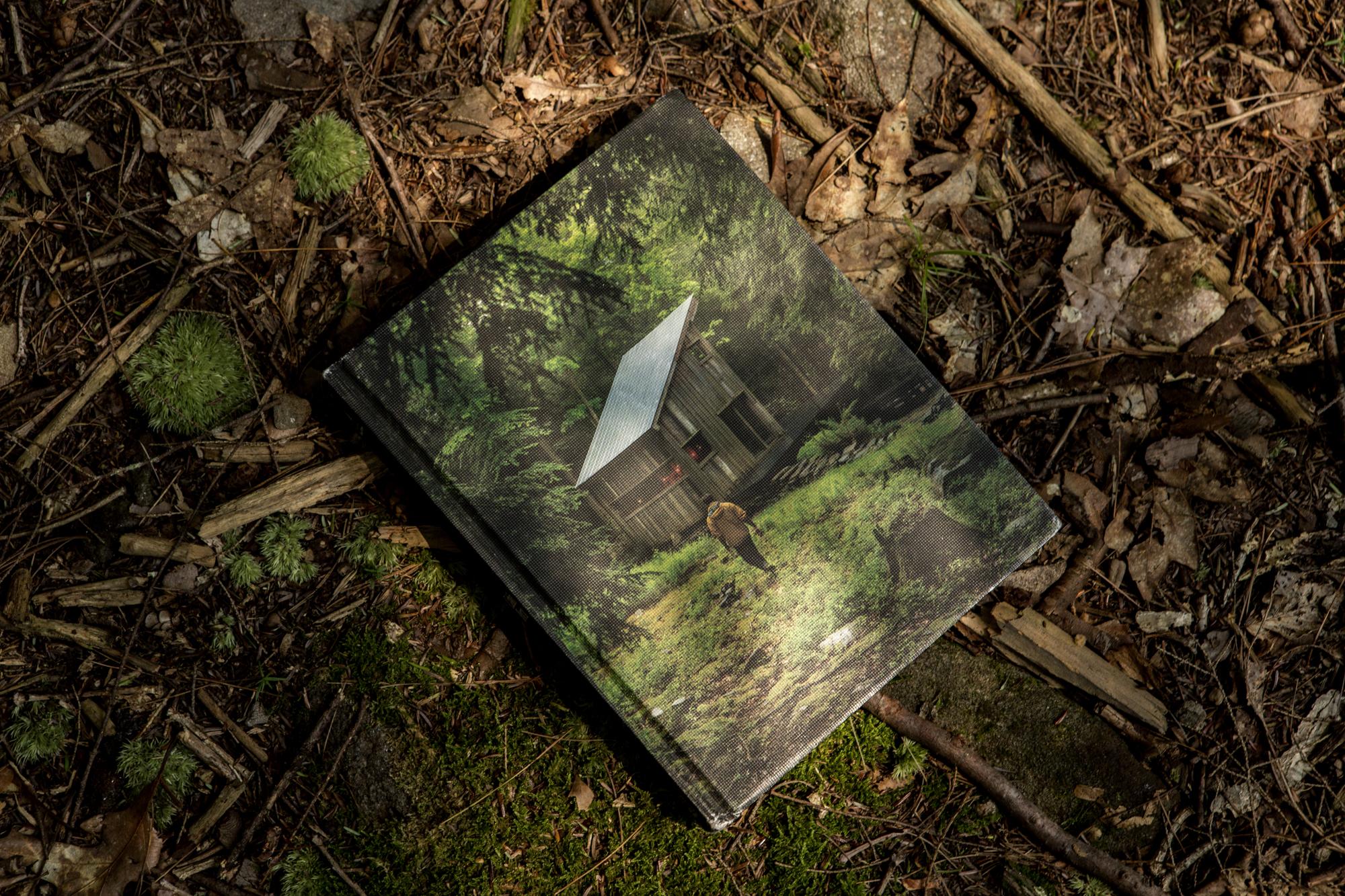 beaver-brook-cabin-porn-book-9
