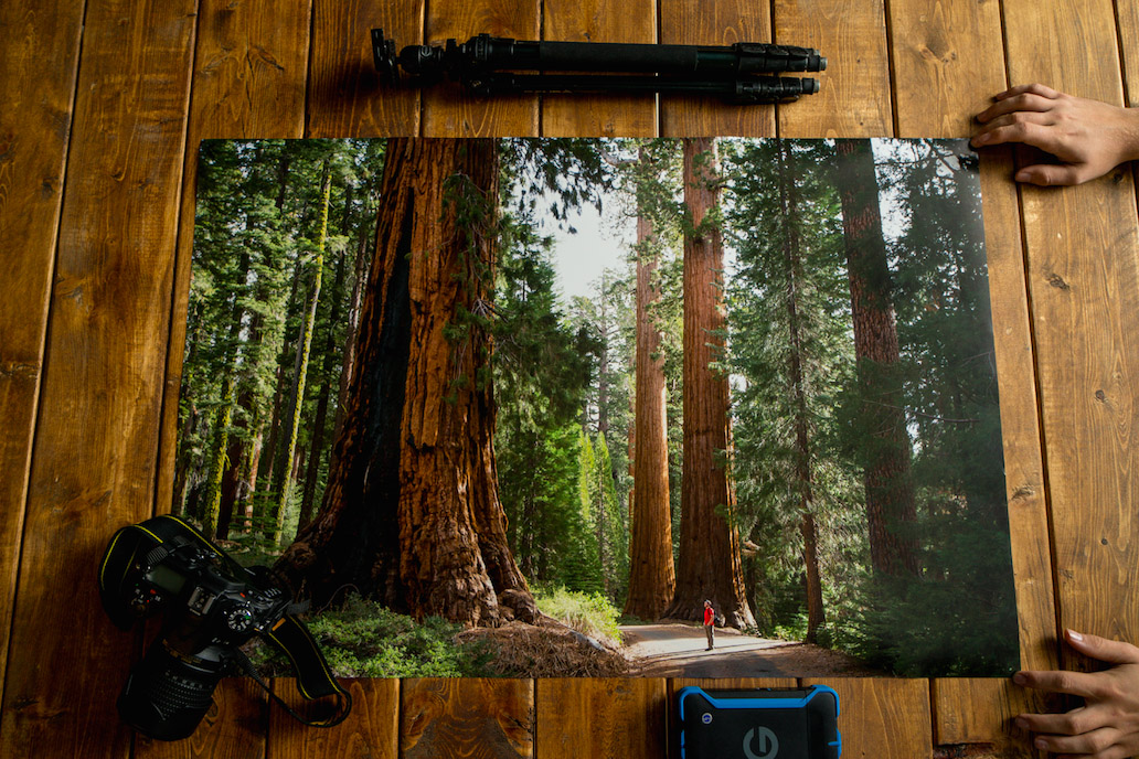 wilderness-culture-print-shop-11