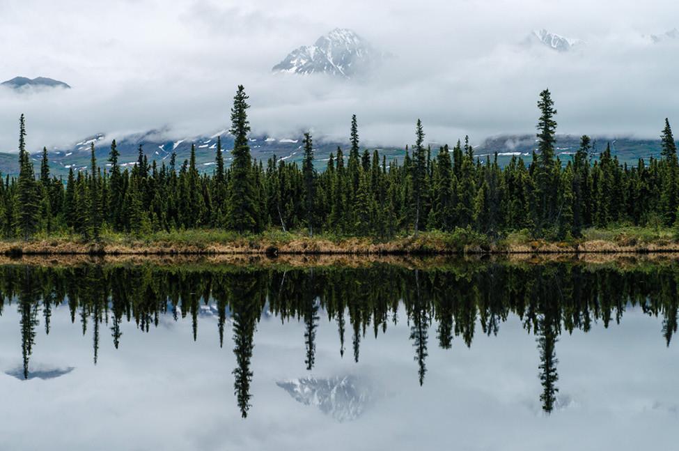 Poler Stuff Adventure 115 Alaska